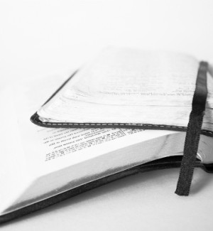 http://www.dreamstime.com/stock-image-open-bibles-image13329661