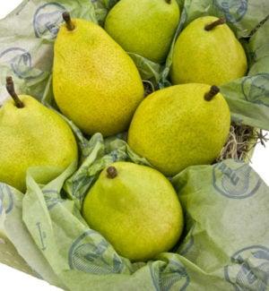 fruit-wrap